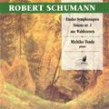 Robert-Schumann_thumb